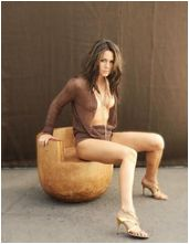 Lady gaga gets nude